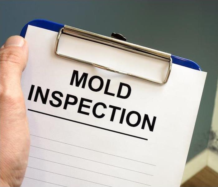 """Mold inspection"""
