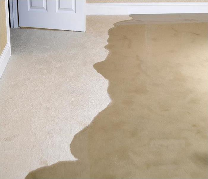 Water Damage Quick Thinking Can Reduce Water Damage To Your Lenoir City Residence