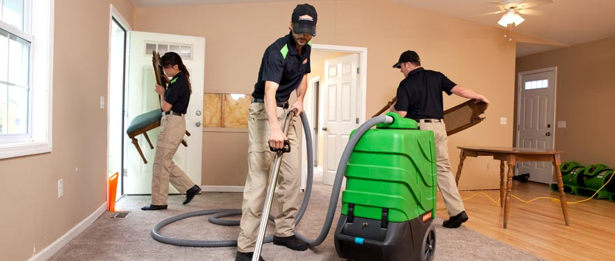 Lenoir City, TN cleaning services